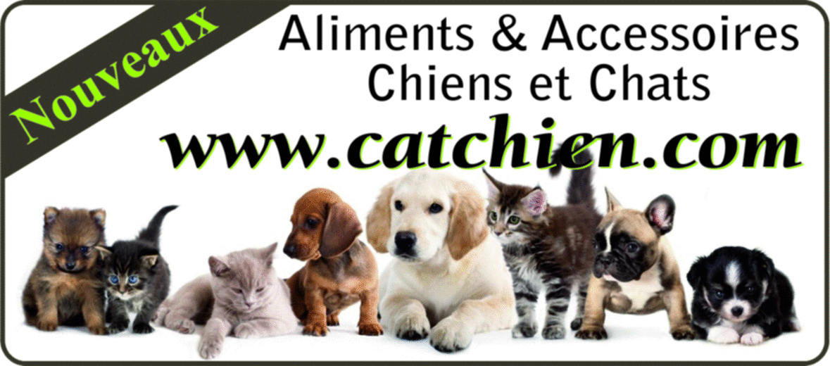 Encart_lien_Catchien
